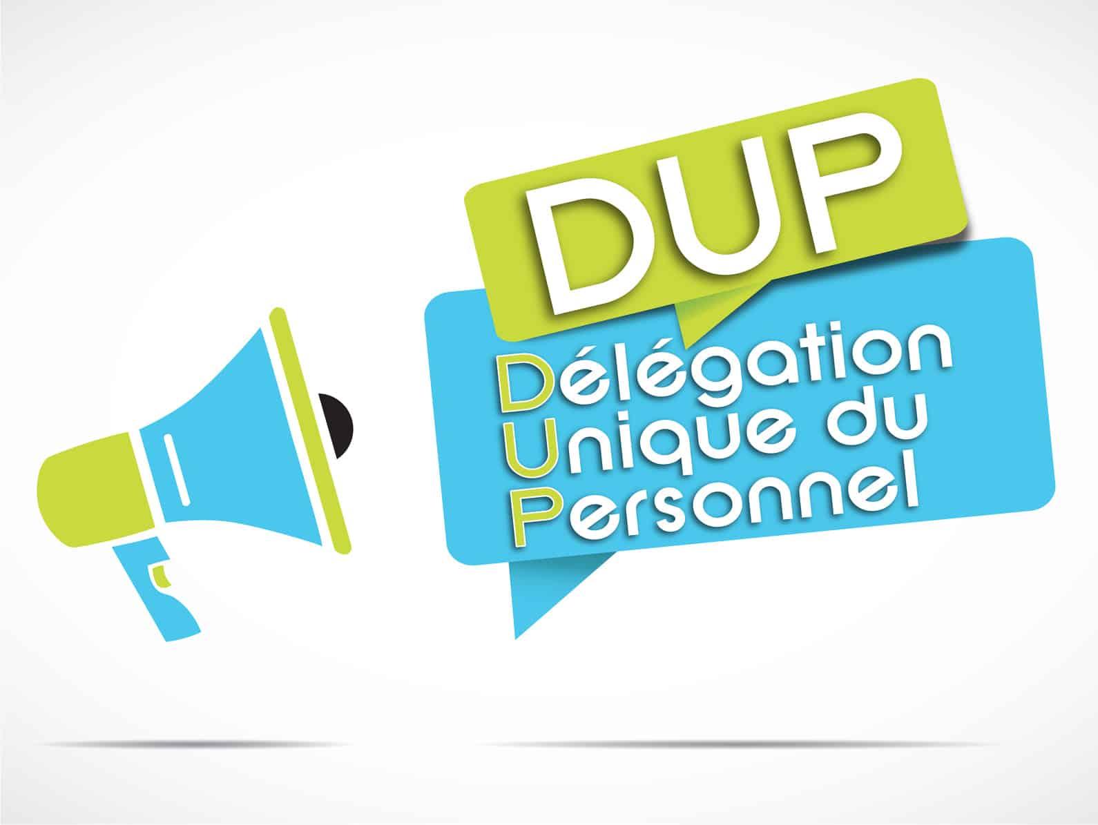 La Dup Ou Delegation Unique Du Personnel Definition Et Explication